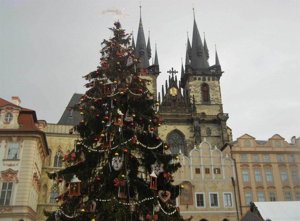 Mercatini di Natale di Praga: l'albero di Piazza della Città Vecchia