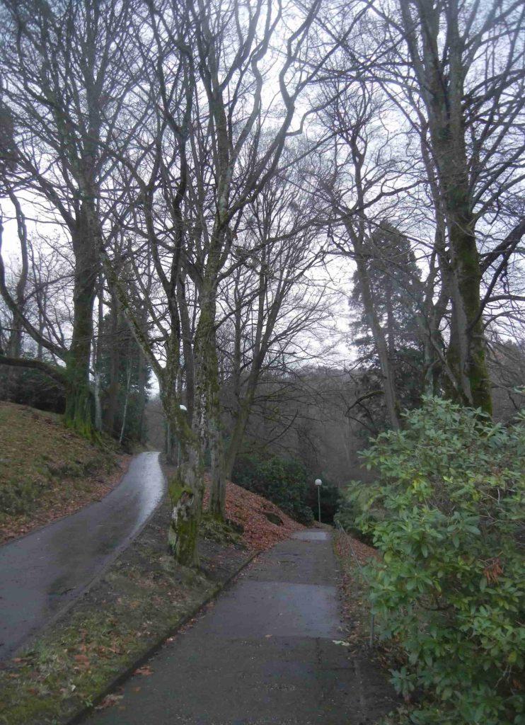 Il Parco di Baden Baden