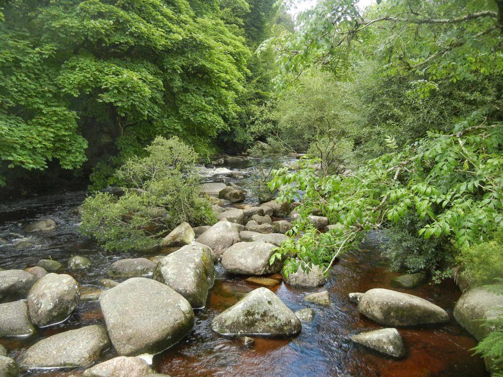 La natura incontaminata del Dartmoor nel sud Inghilterra