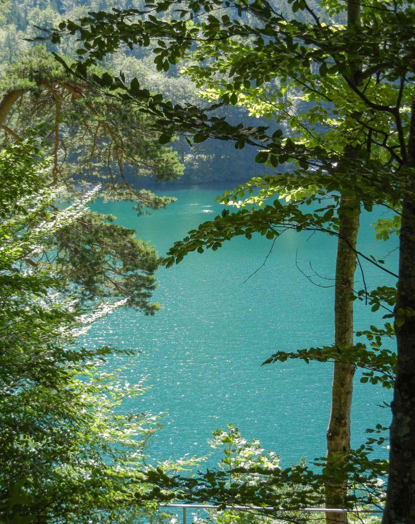 Il lago Alpsee in Baviera